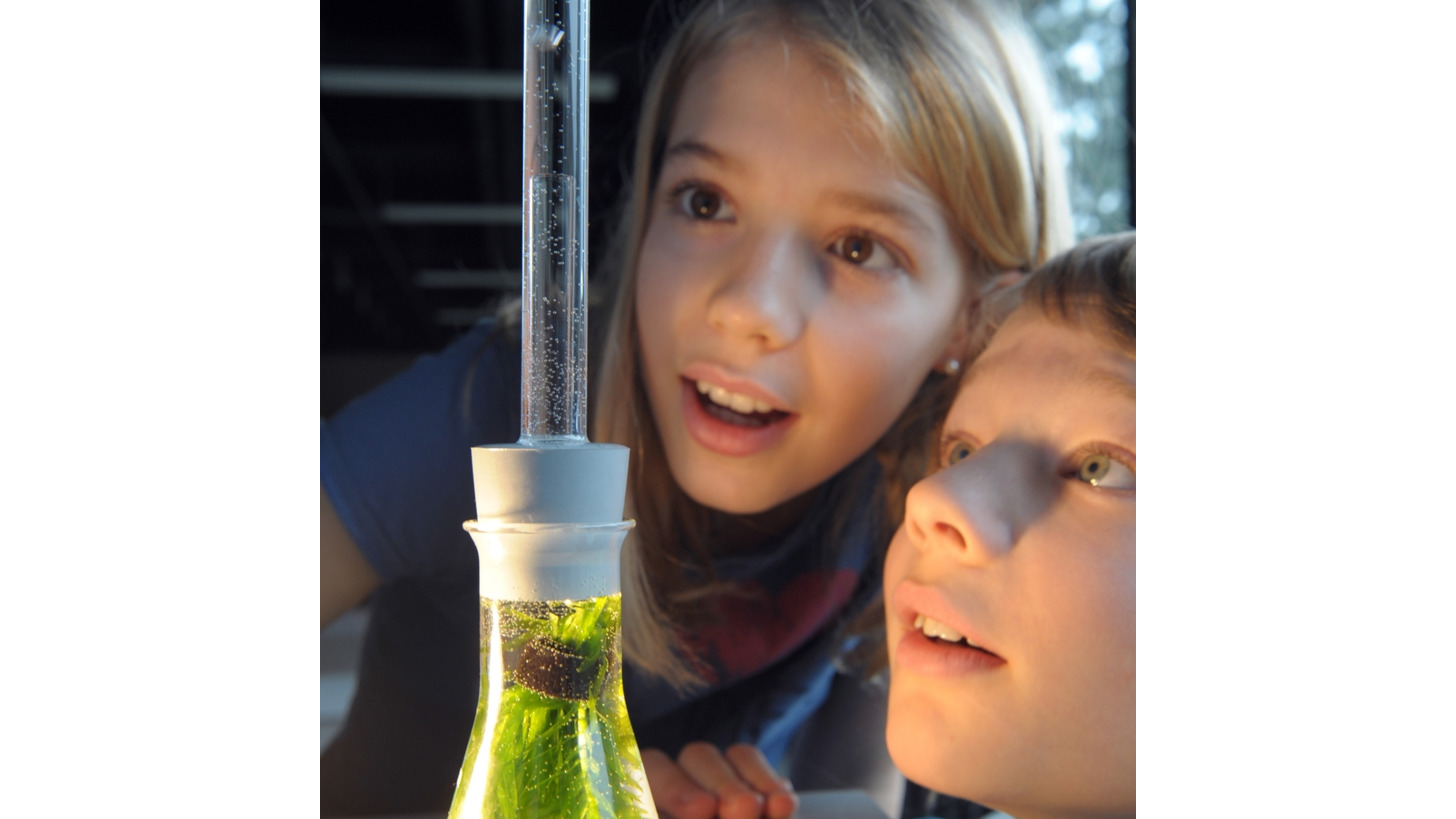 Logo Experiment sets Biology