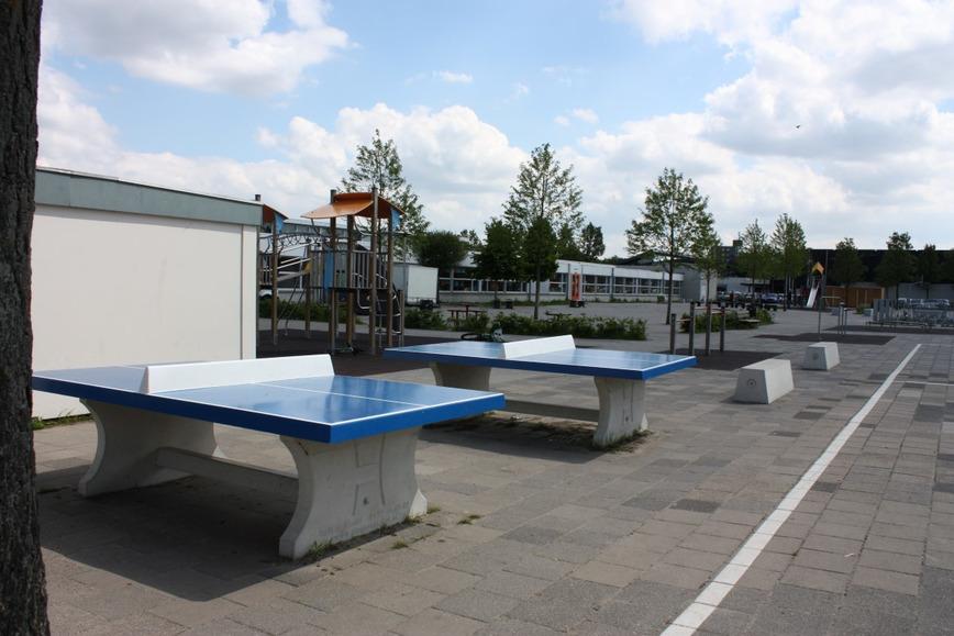 Logo Concrete Ping-pong table