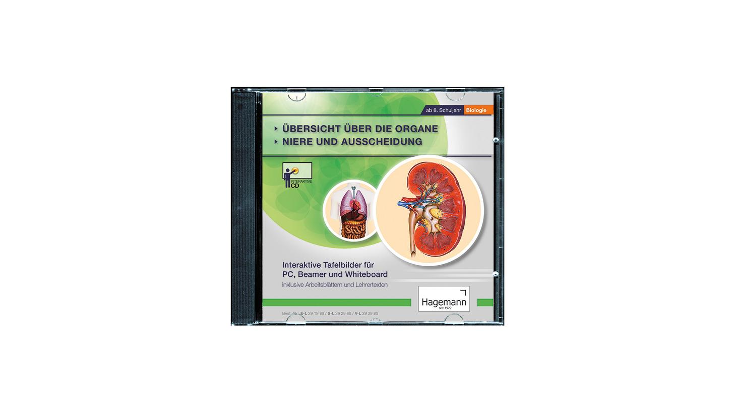 Logo Organe, Niere und Ausscheidung