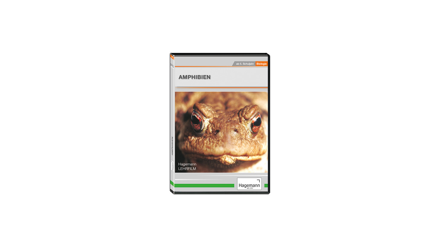 Logo Amphibien
