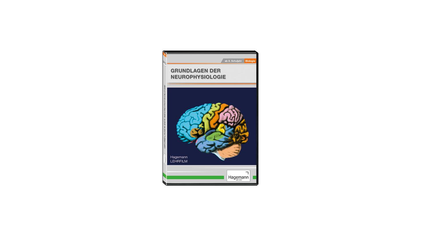 Logo Grundlagen der Neurophysiologie