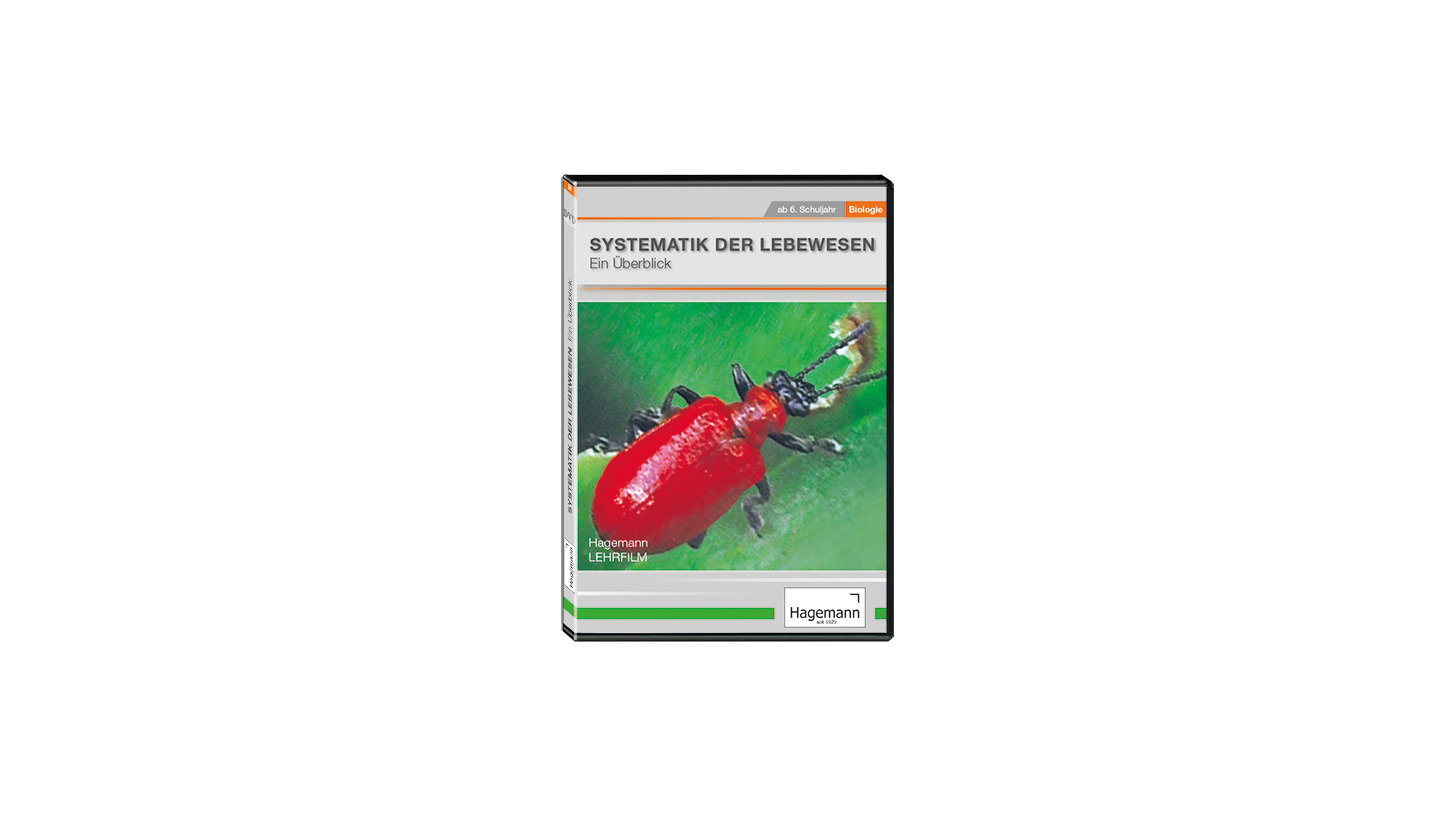 frosch körperbau arbeitsblatt
