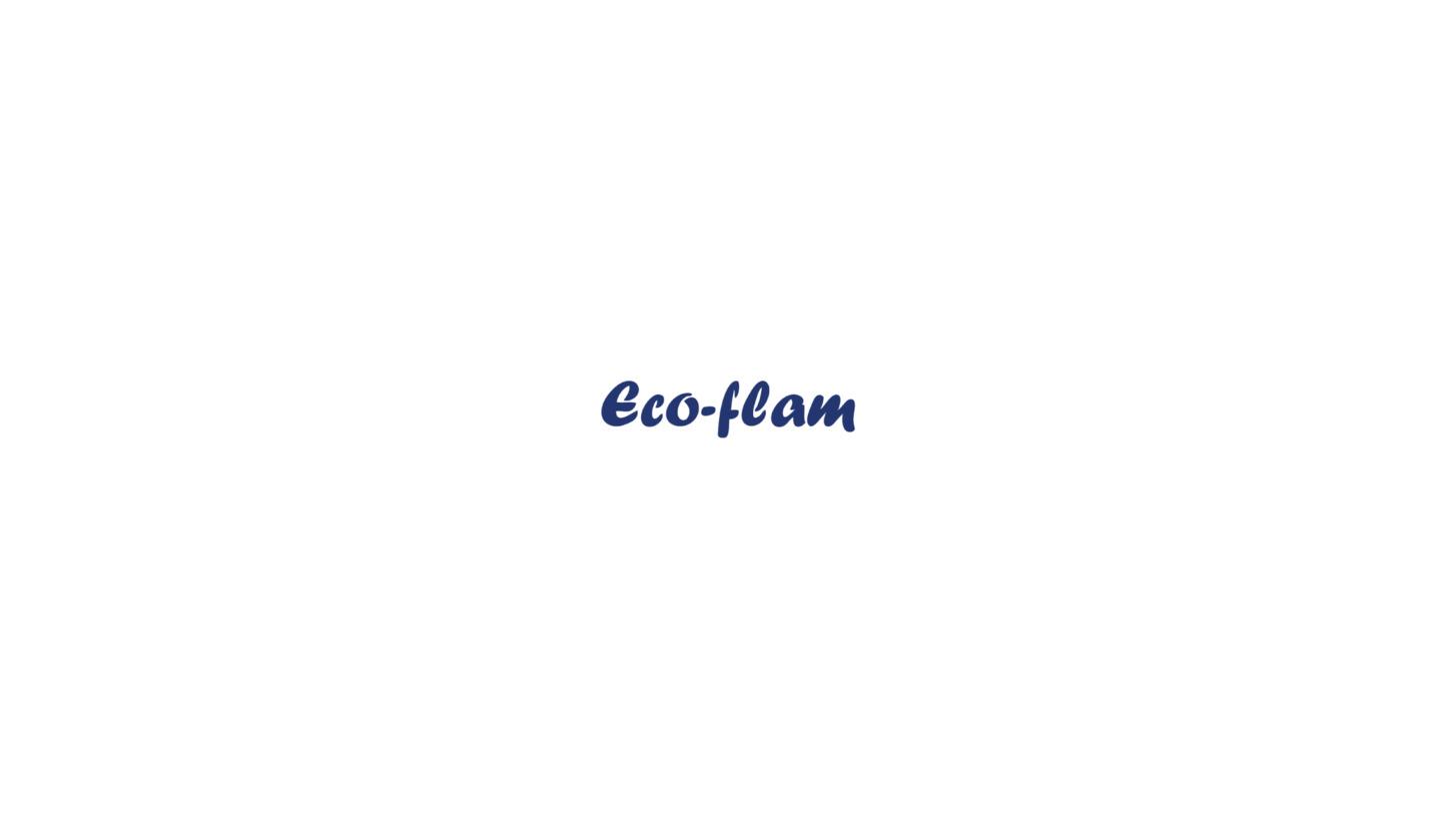 Logo Eco-flam