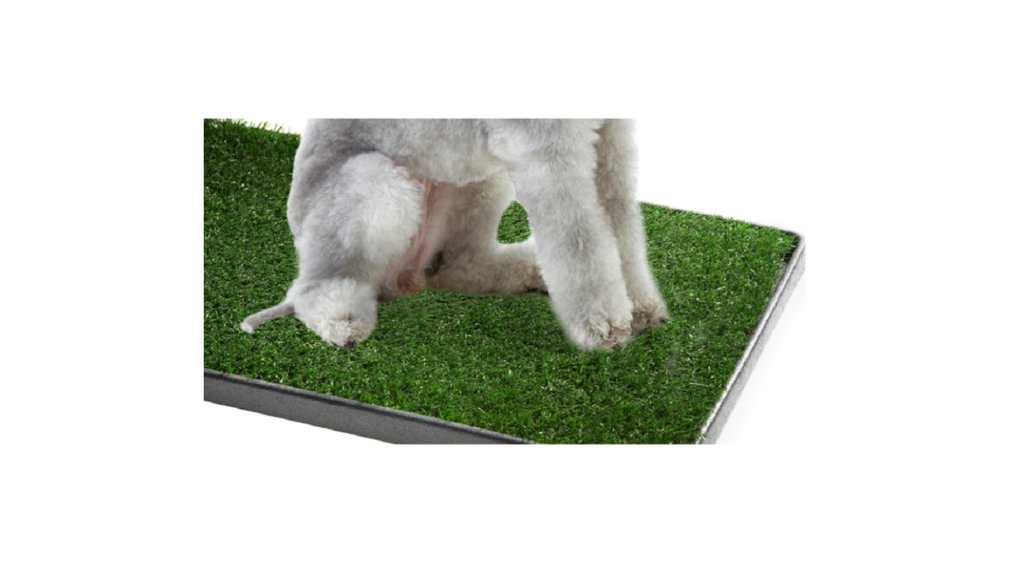 Logo Artificial Grass for pet