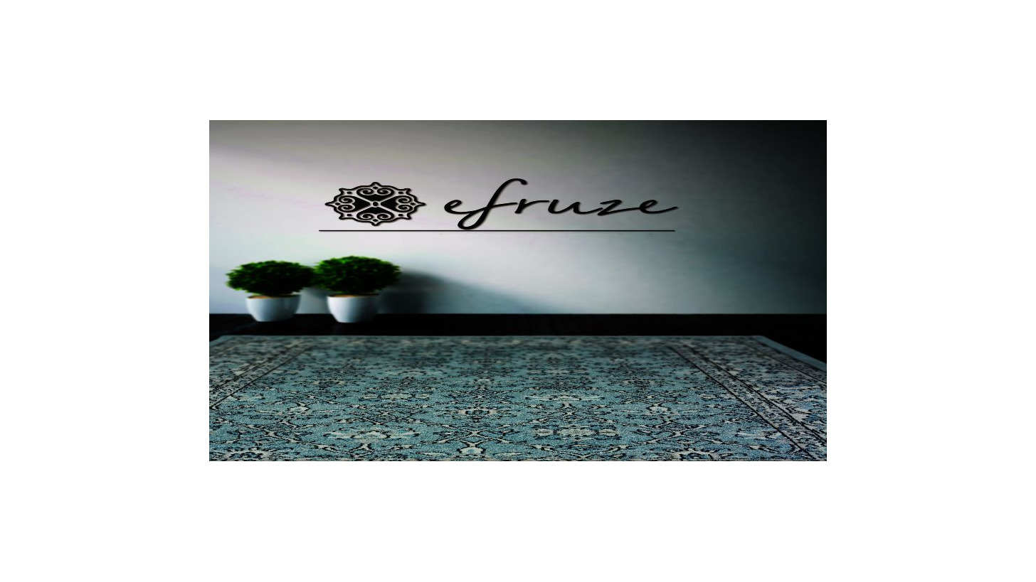 Logo EFRUZE