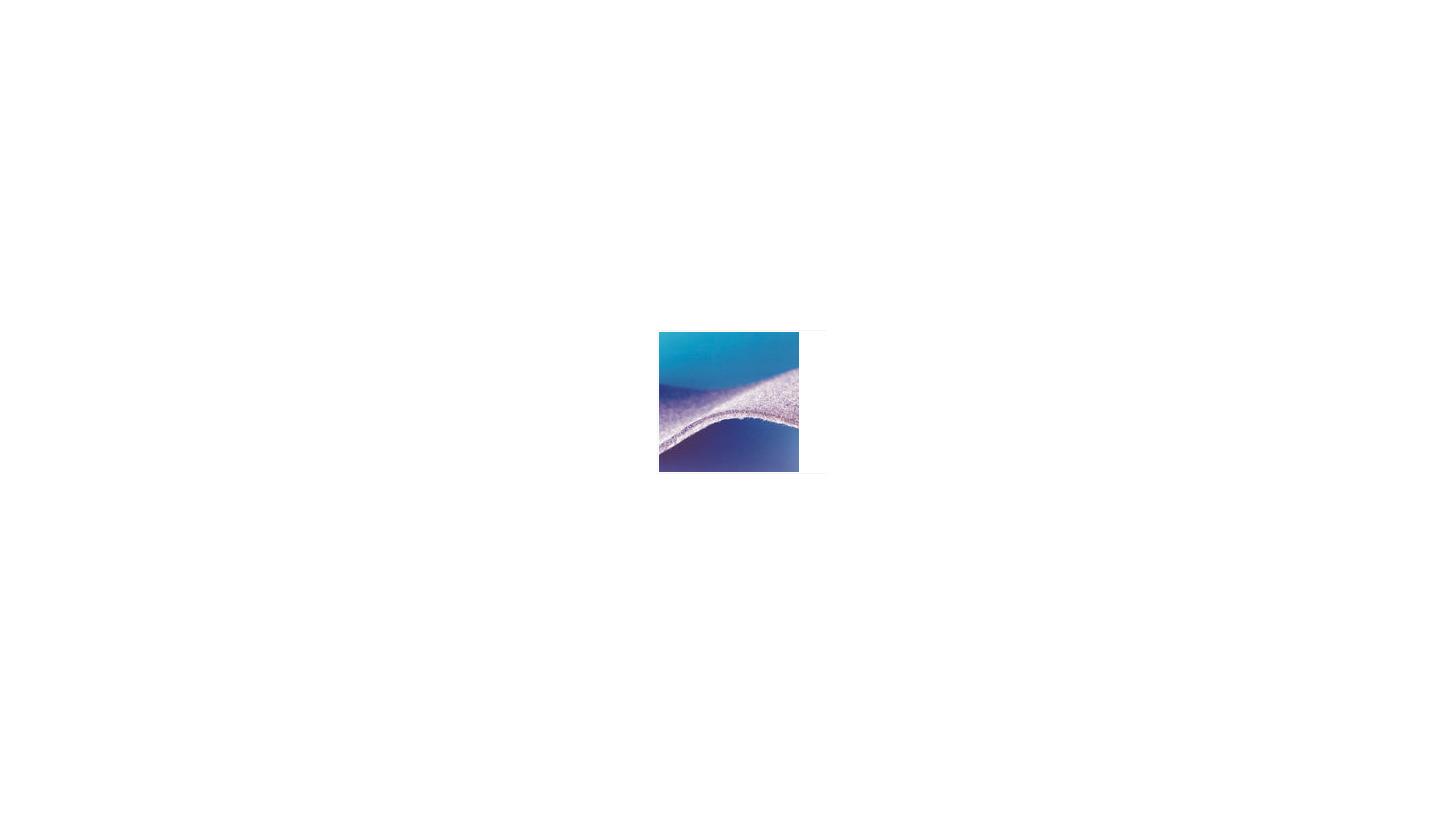 Logo Egalsoft