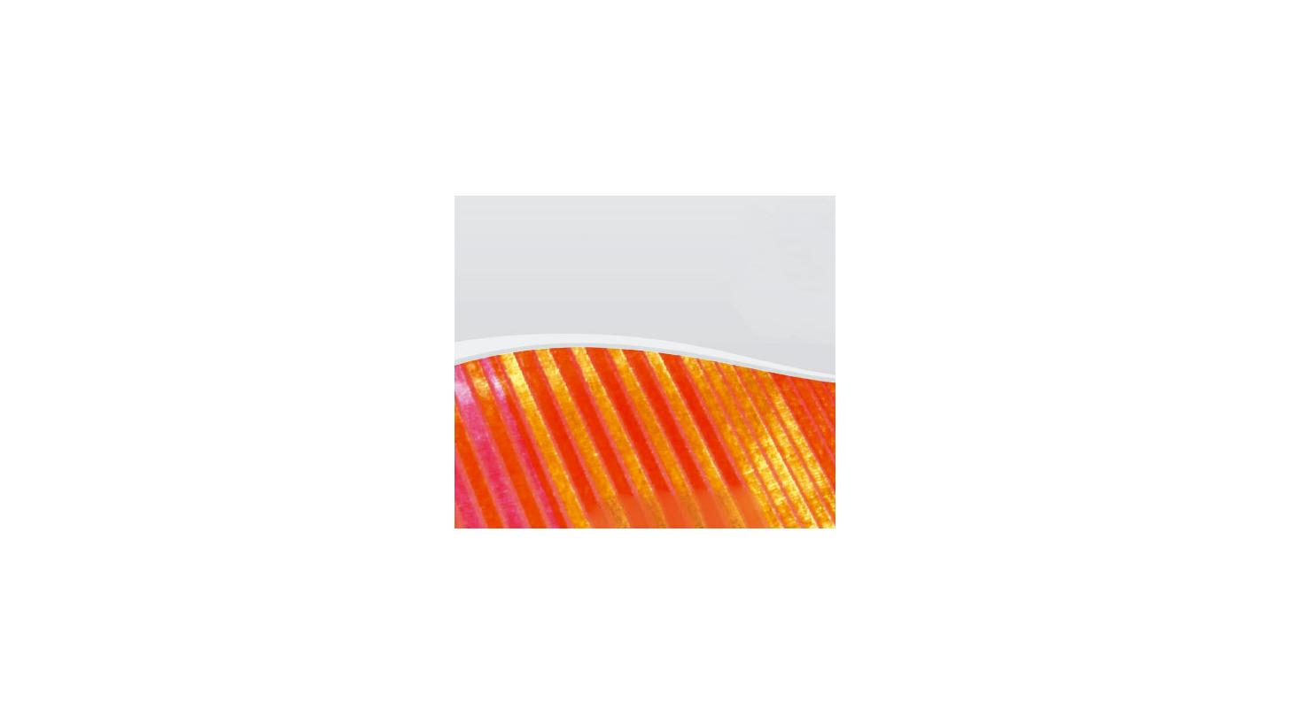 Logo Teppichausrüstung für Webvelour