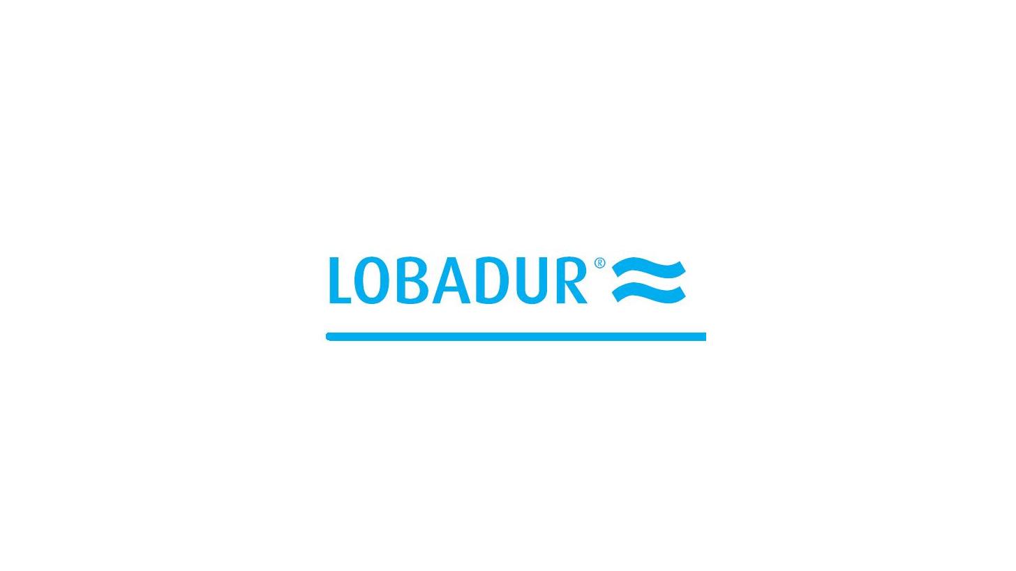 Logo LOBADUR