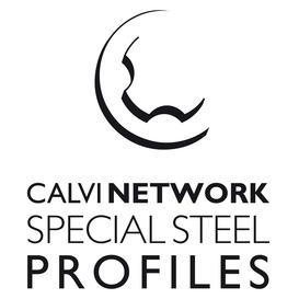 Logo Calvi Holding