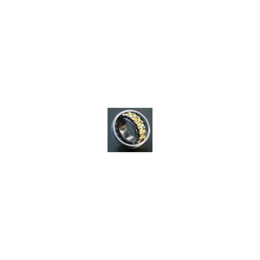 Logo Spherical Roller Rearings
