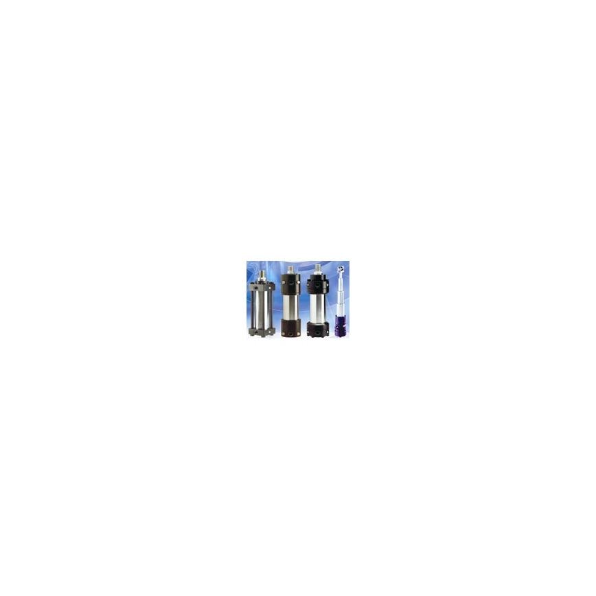Logo Normzylinder