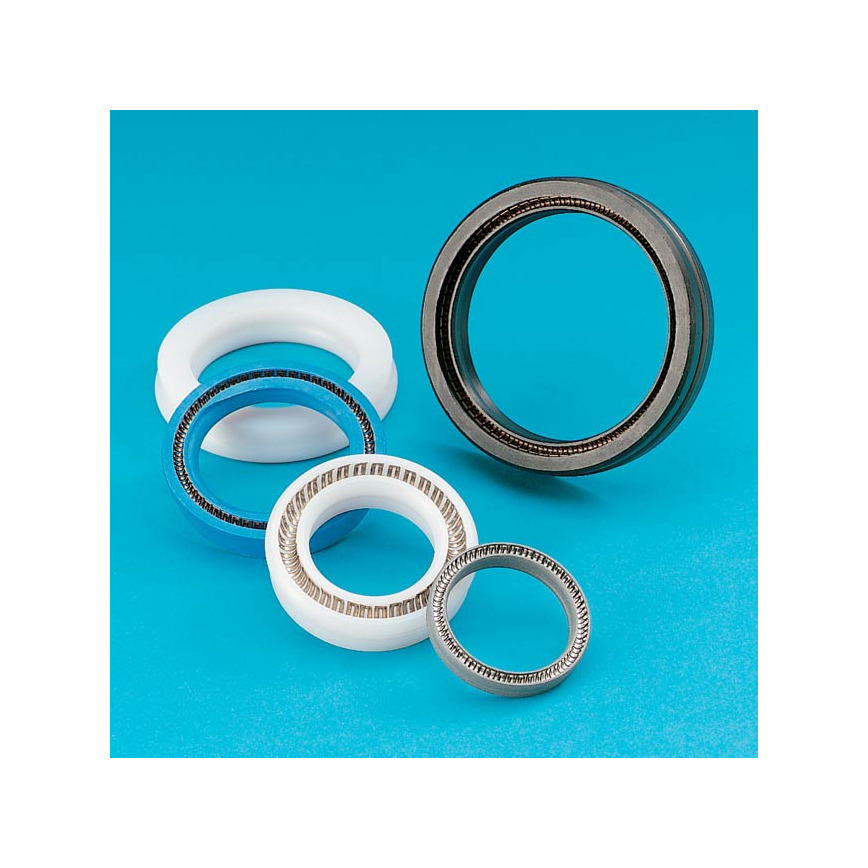 Logo Spring-Energized PTFE Seals and Rings