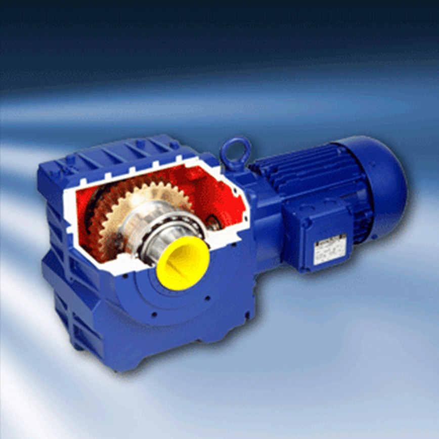 Logo Worm Geared Motor - BS Series
