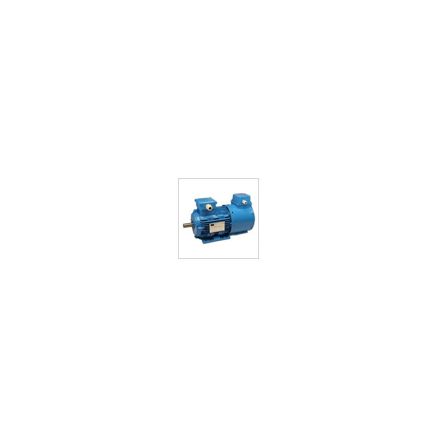 Logo MSVF series inverter duty motor
