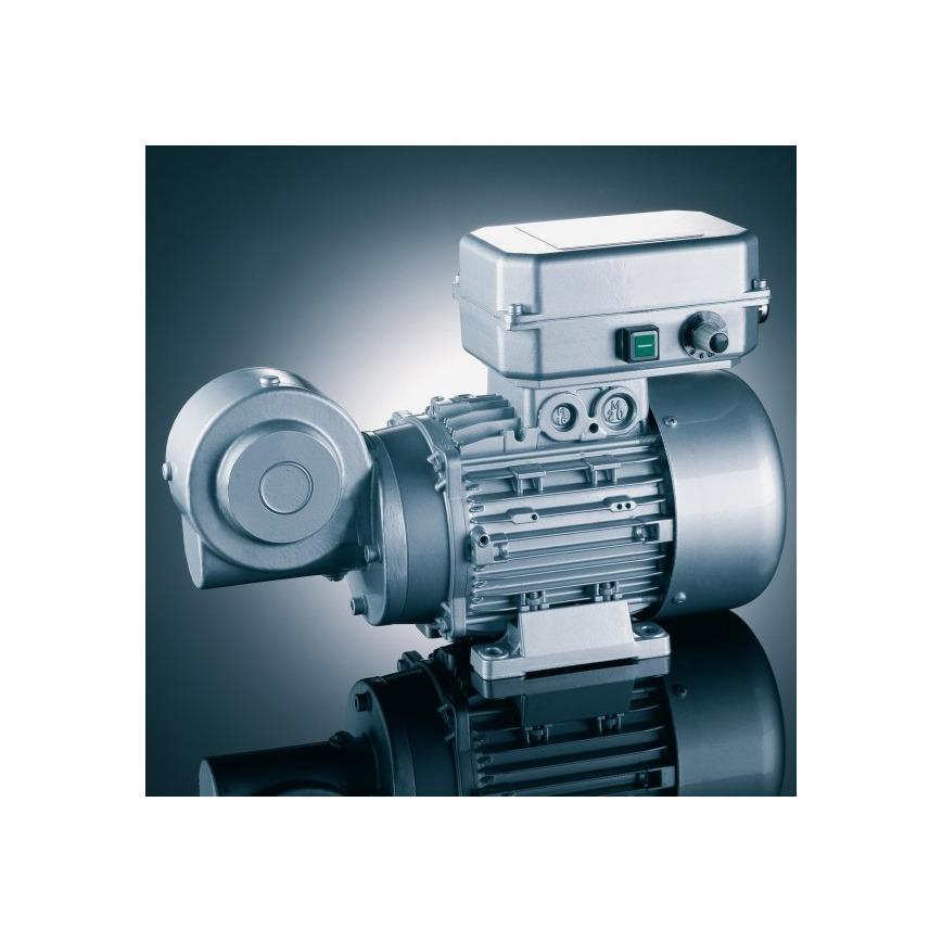 Logo Drehstrommotoren mit fest aufgebautem Frequenzumrichter