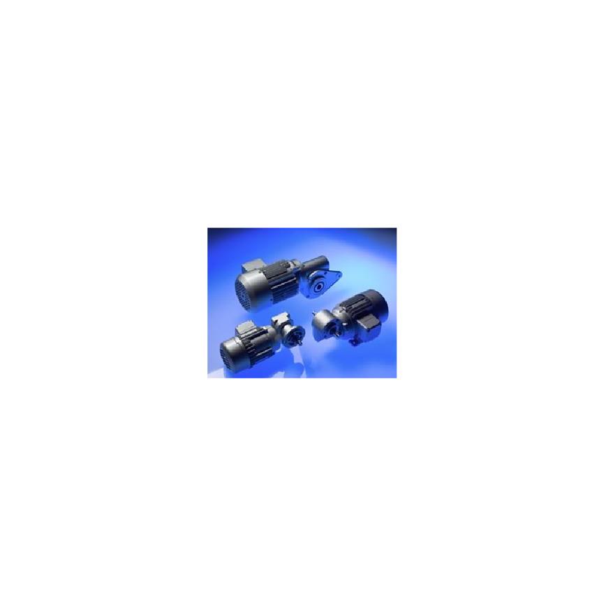 Logo Einstufige Schneckengetriebemotoren