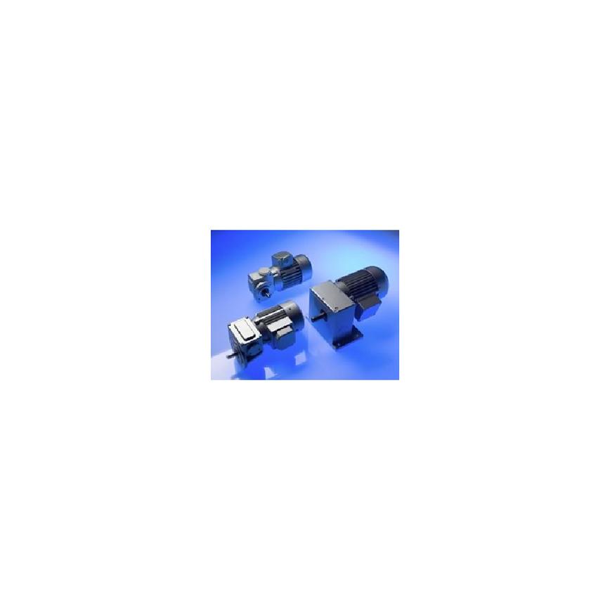 Logo Zweistufige Schneckengetriebemotoren