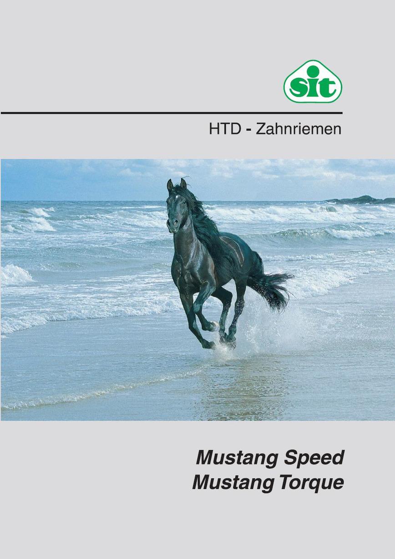 Logo SIT - Zahnriemen HTD, Mustang Speed, Mustang Torque