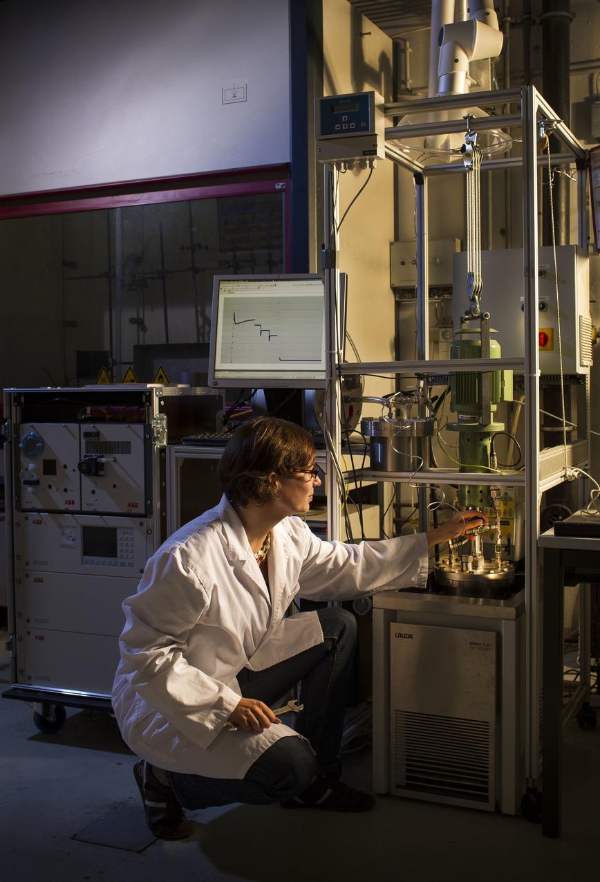 Logo Regenerative Gaserzeugung