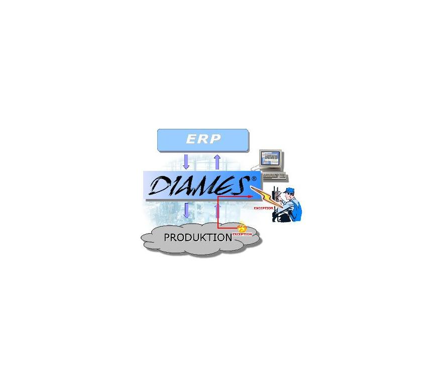 Logo DIAMES