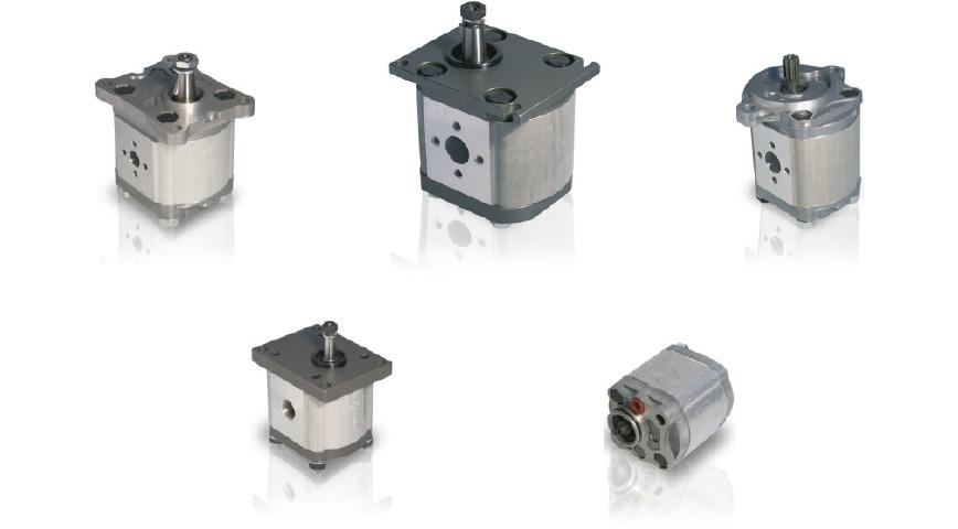 Logo Gear pumps and gear motors