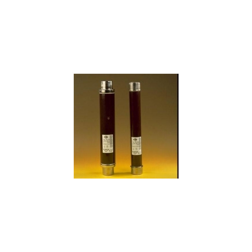 Logo High voltage limiting fuses and bases