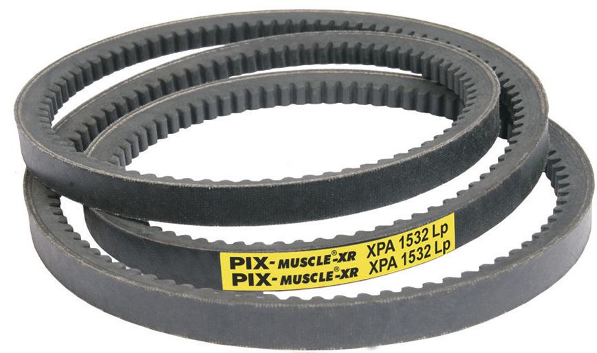 Logo PIX-Muscle®  (Cogged Hi-Power MF Belts)