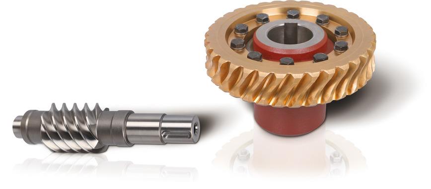 Logo Dual lead worm and wheel
