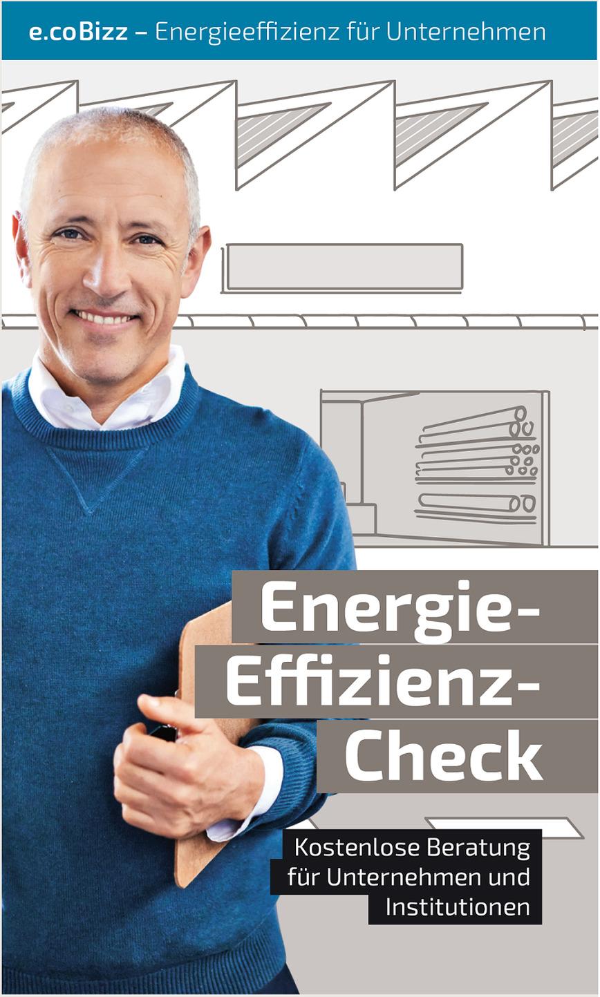 Logo Energie-Effizienz-Check