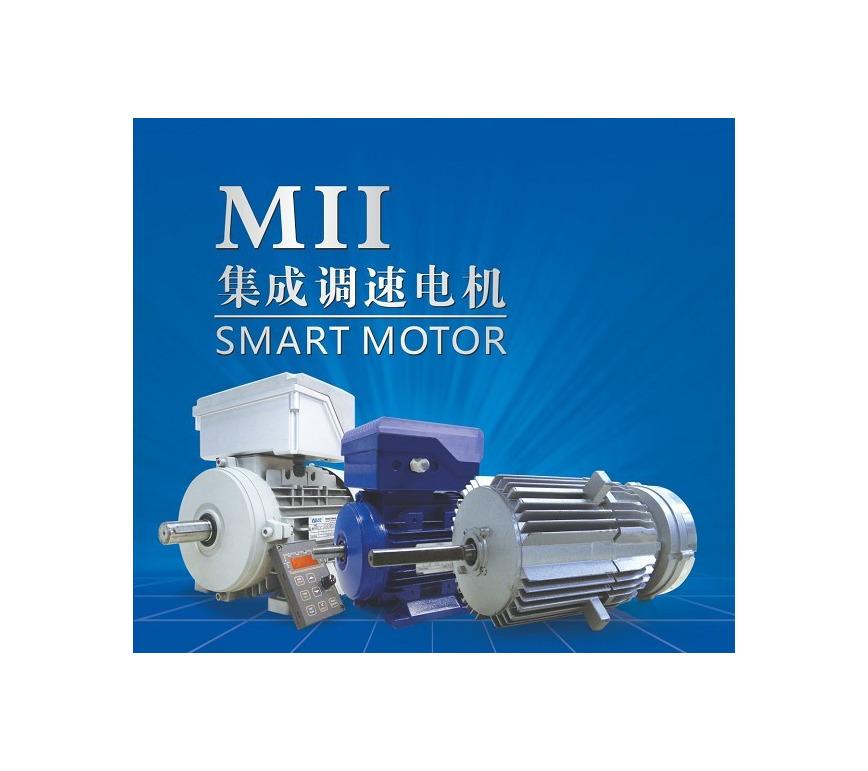 Logo MII SMART MOTOR