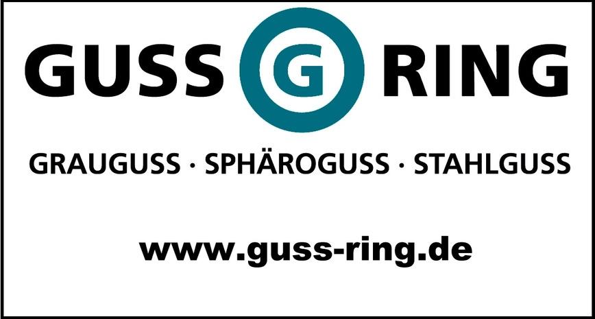 Logo Grauguss, Sphäroguss, Stahlguss - Sandguss, Feinguss, Kokillenguss
