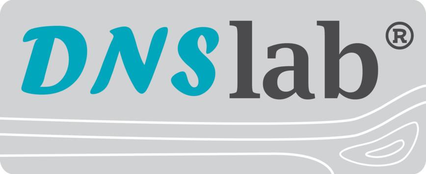 Logo (2016) DNSlab Simulationssoftware