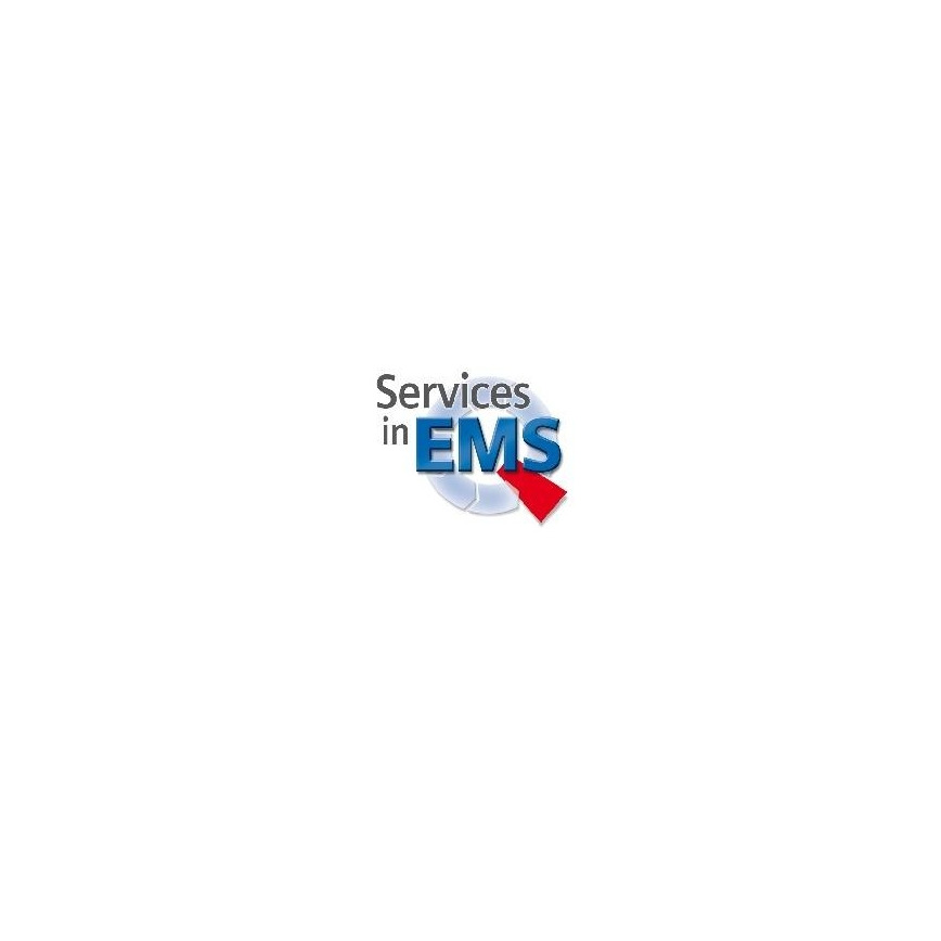 Logo Electronic Manufacturing Services (EMS)