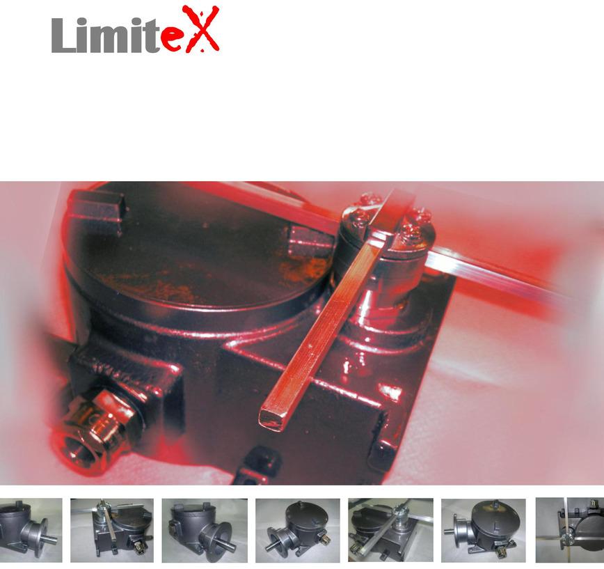"Logo Explosion proof Limit Switch ""LimitEx"""
