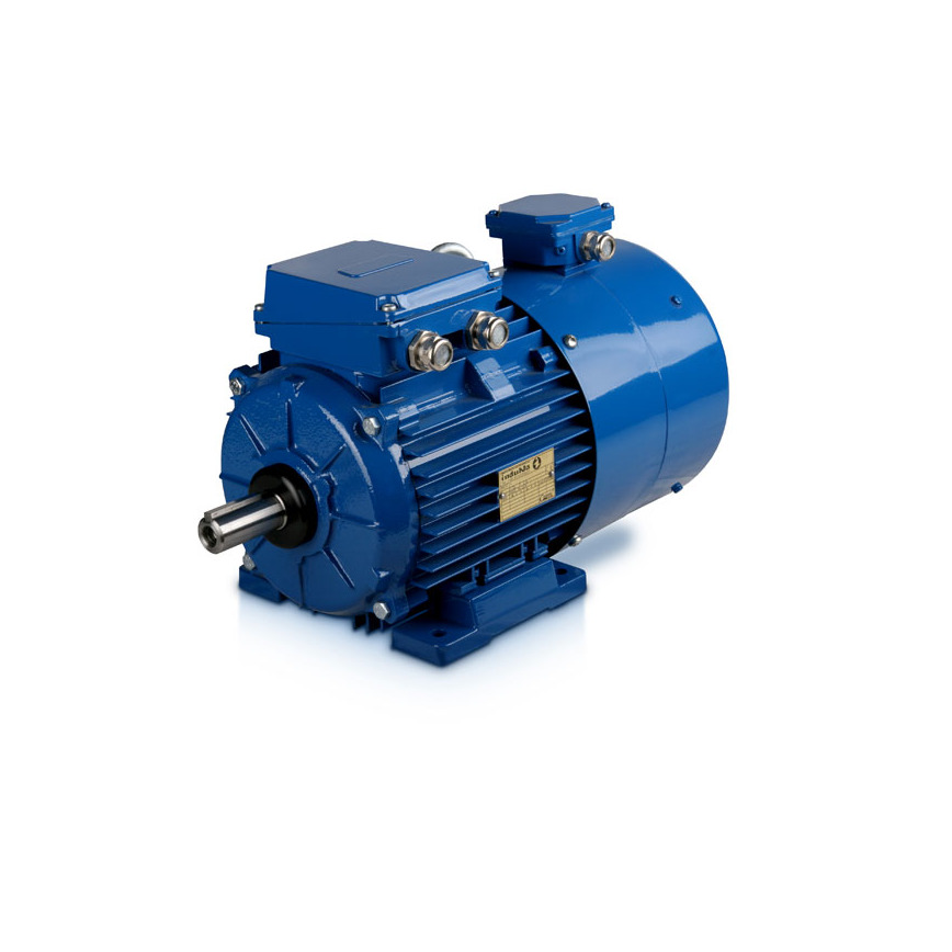 Logo 3-phase induction motors with foreign cooling