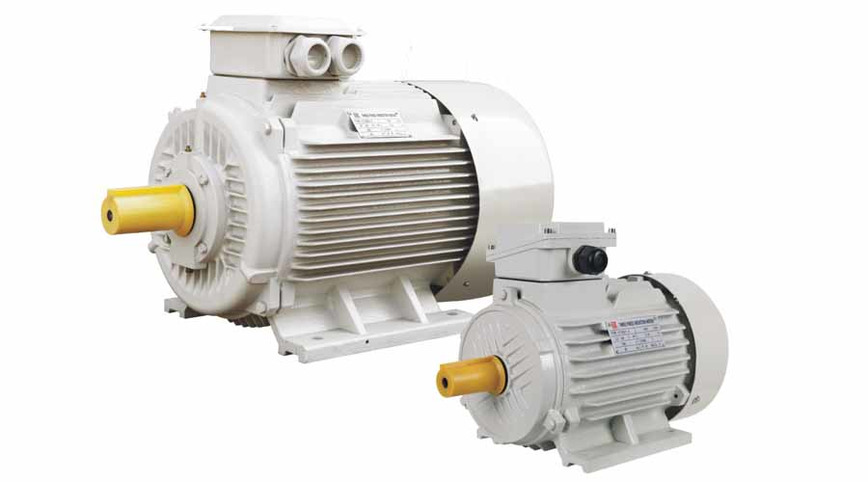 Logo Y2 SERIES THREE PHASE ELECTRIC MOTOR