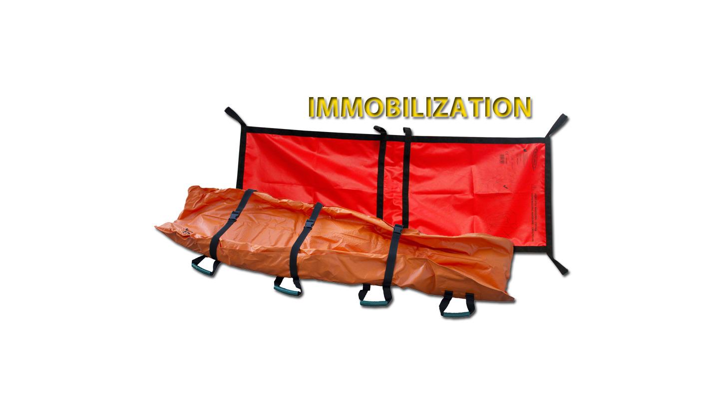 Logo Immobilization