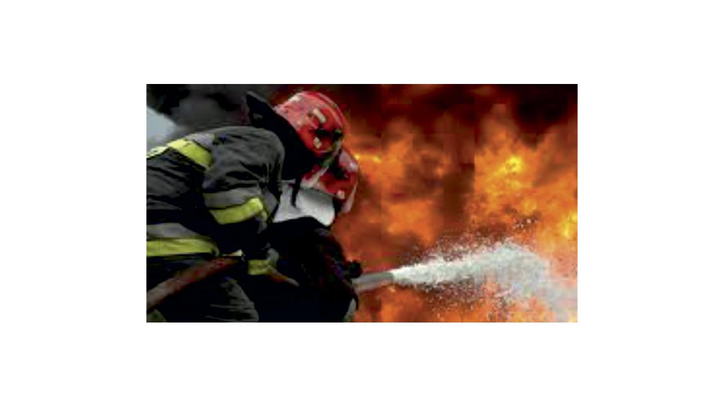 Logo FIRE FIGHTING FOAMS