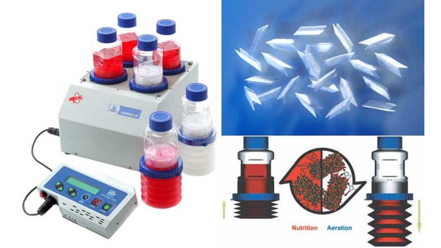 Logo High-density cell culture bioreactor