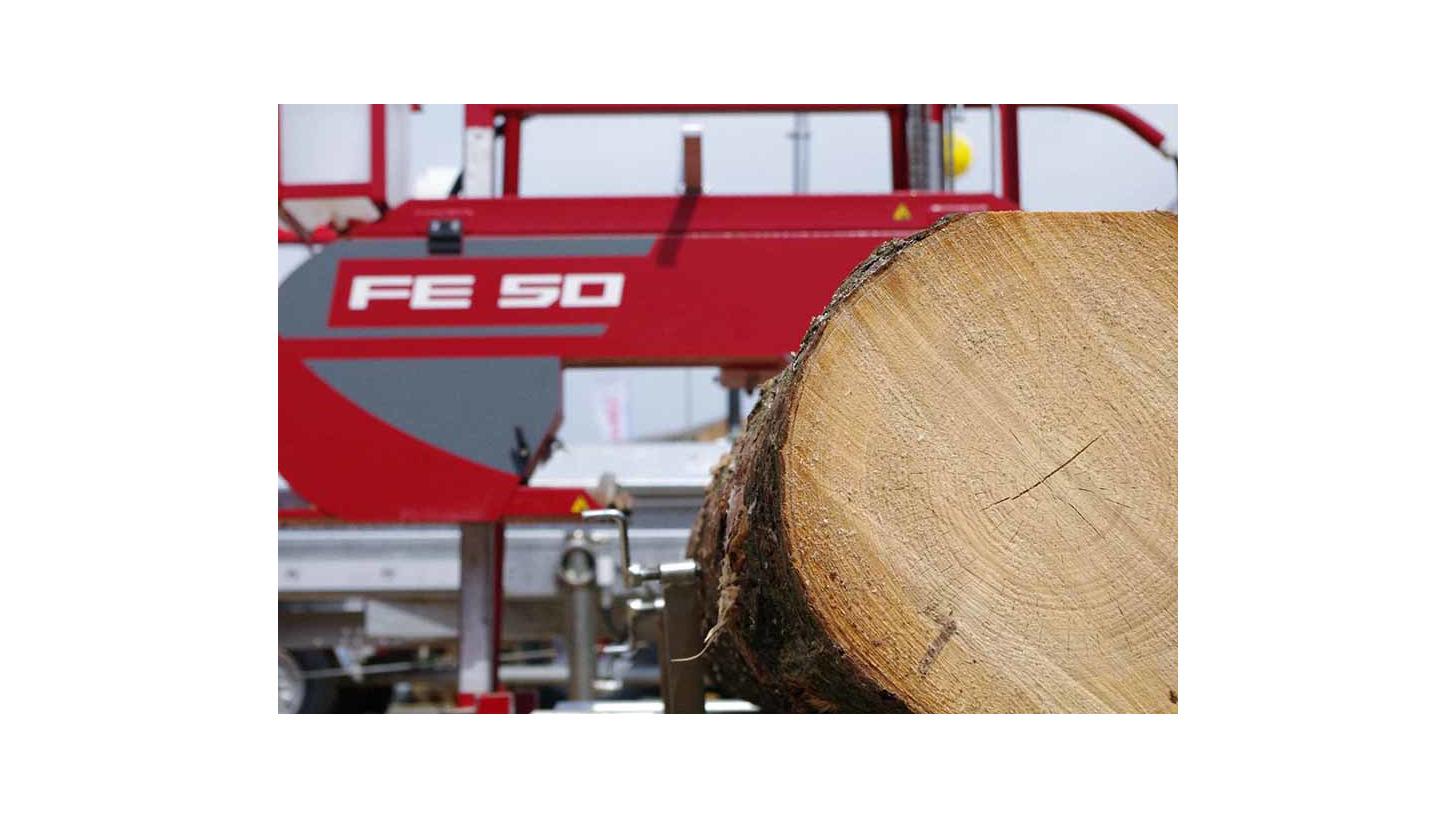 Logo FE 50