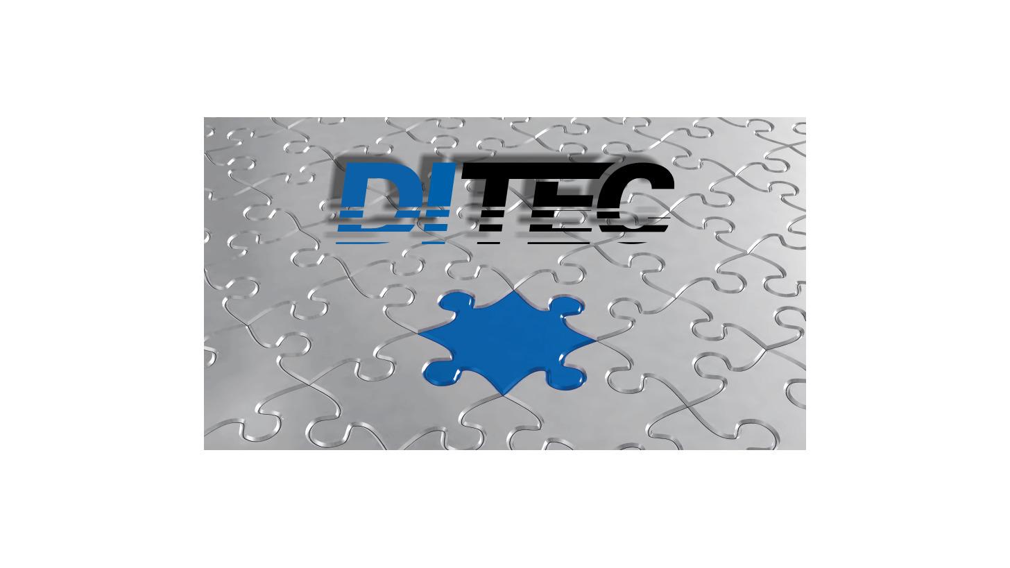 Logo Dietrich's Consultancy / Support