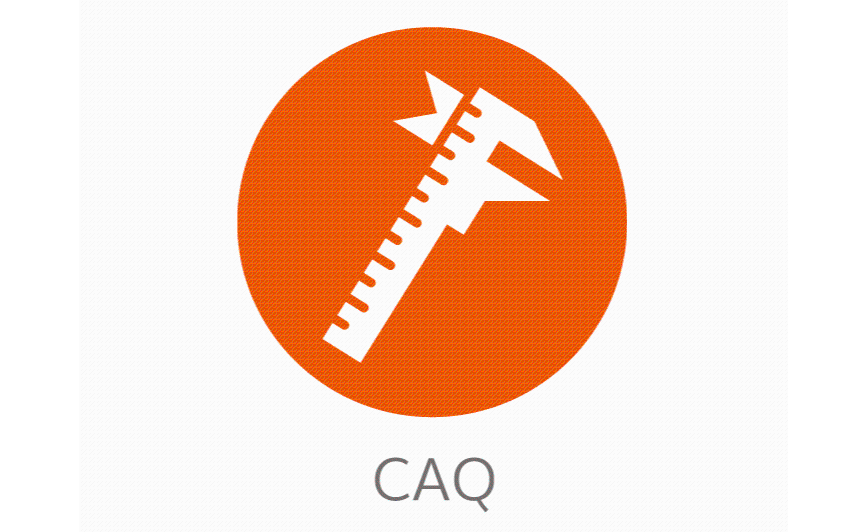 Logo CAQ software - FM CAQ powered by toolflakes