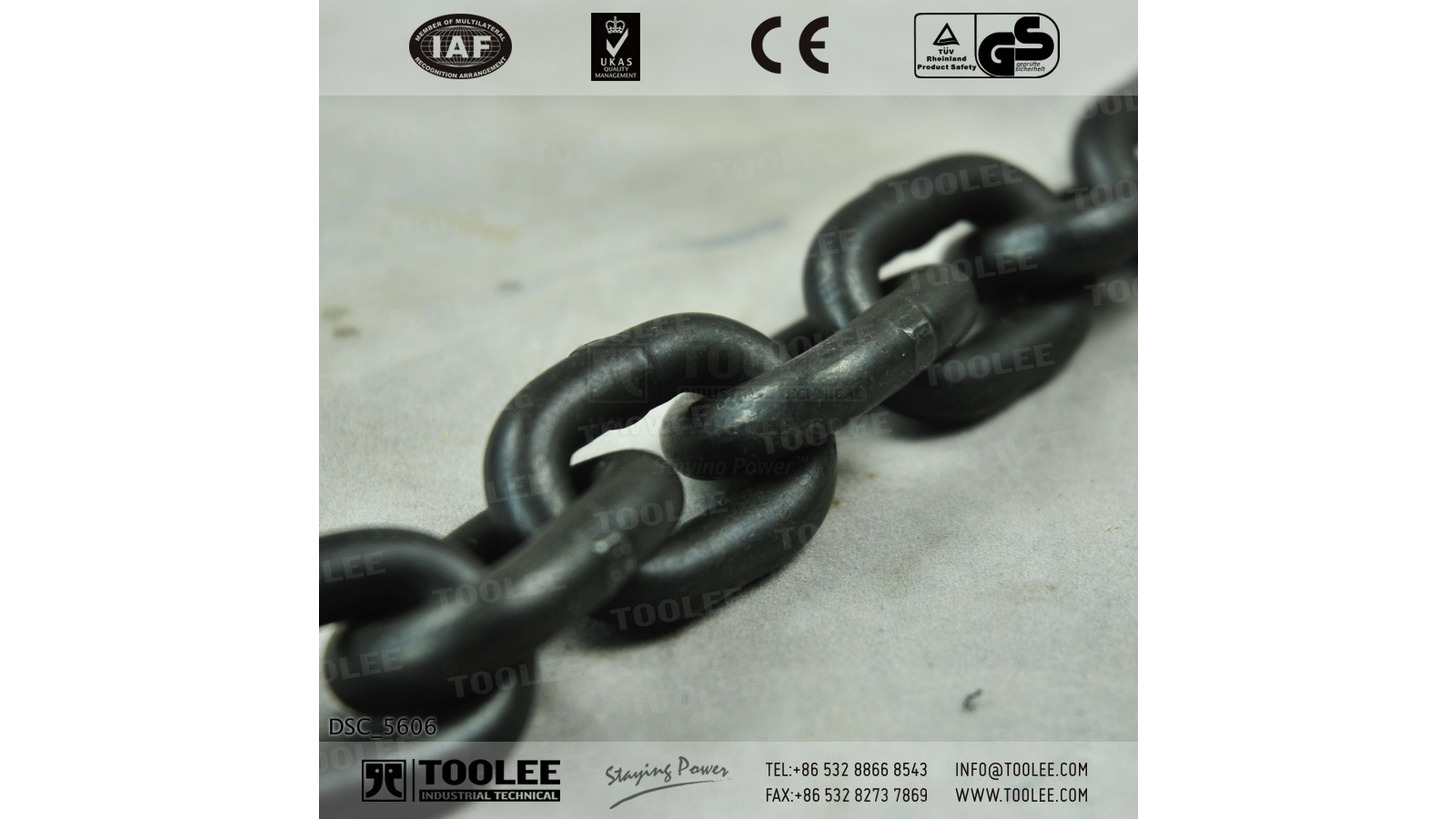 Logo G80 Lifting Short Chain EN818-2