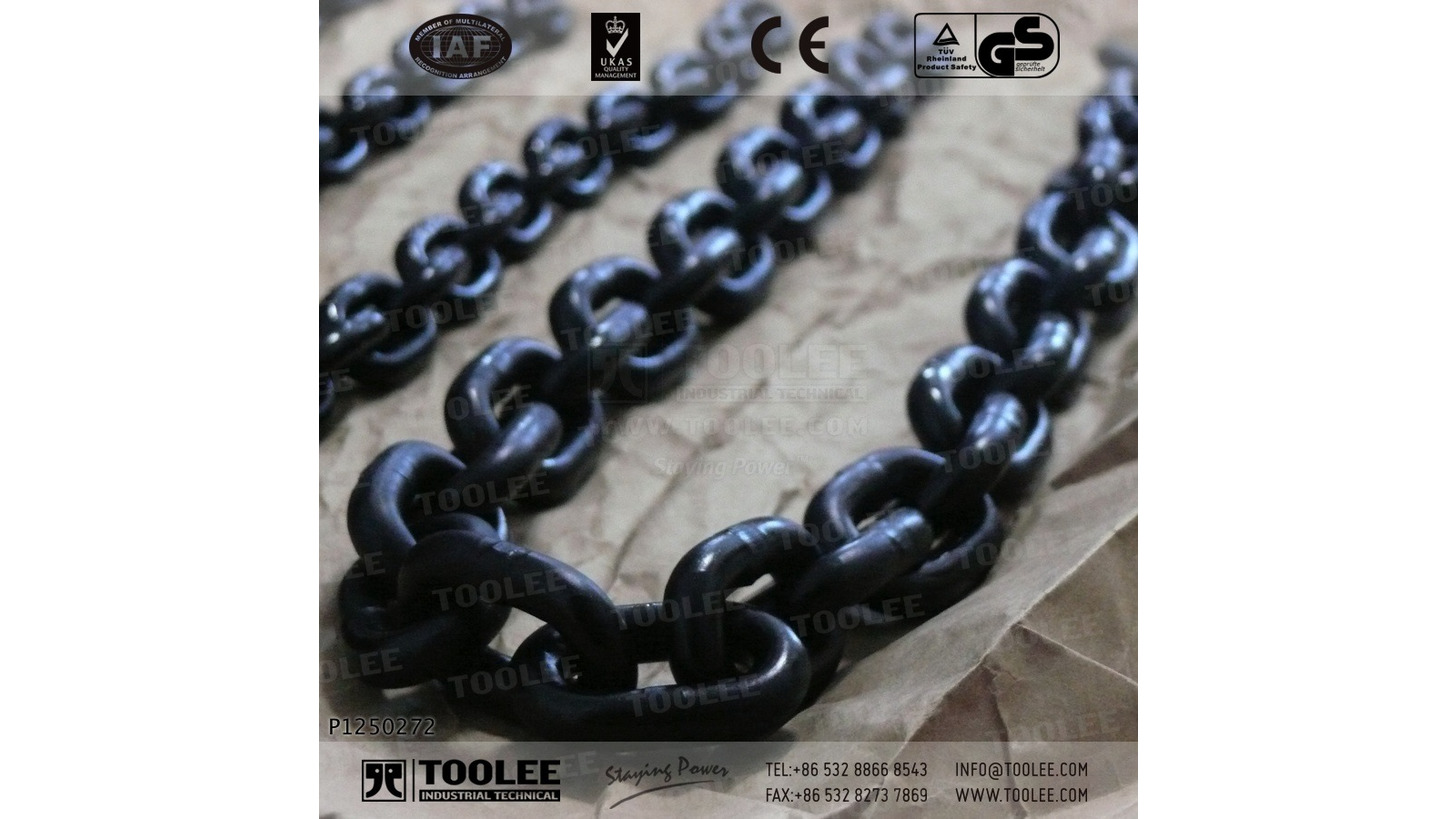 Logo G80 Load Chain Short Link EN818-7