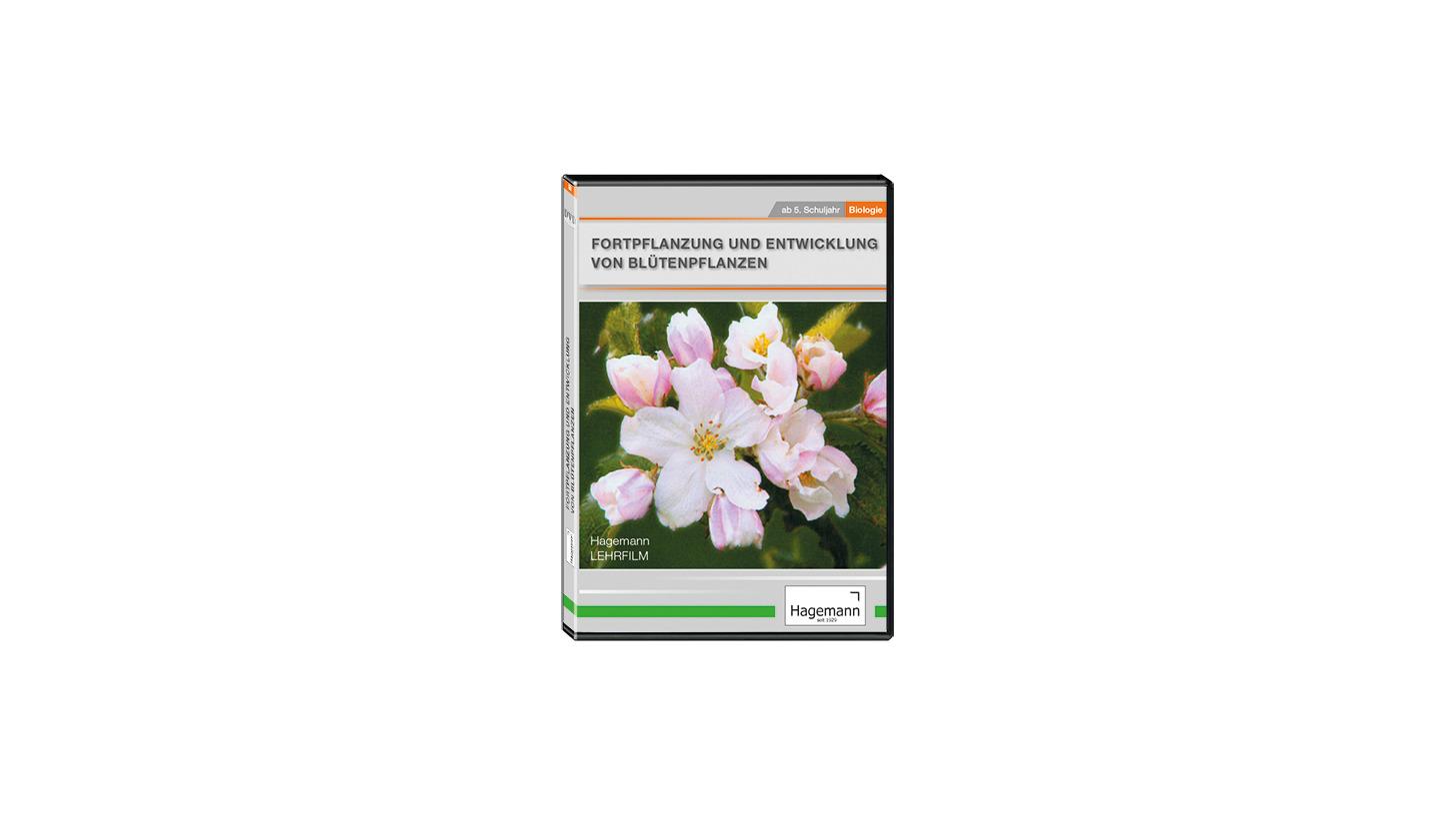 Logo Entwicklung von Blütenpflanzen