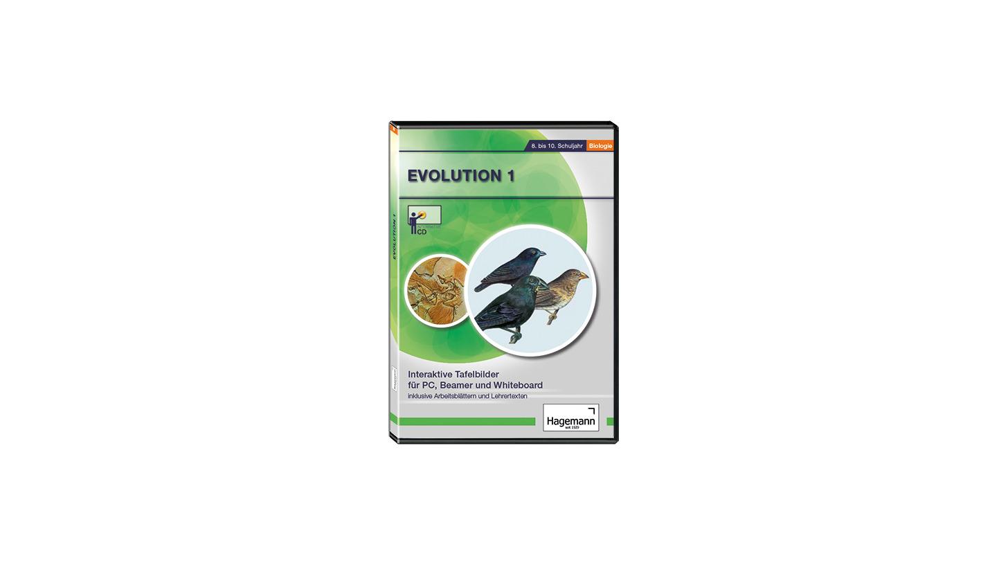 Logo Evolution 1