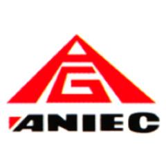 Aniec