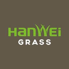 Hanwei Artificial Grass (Changzhou)
