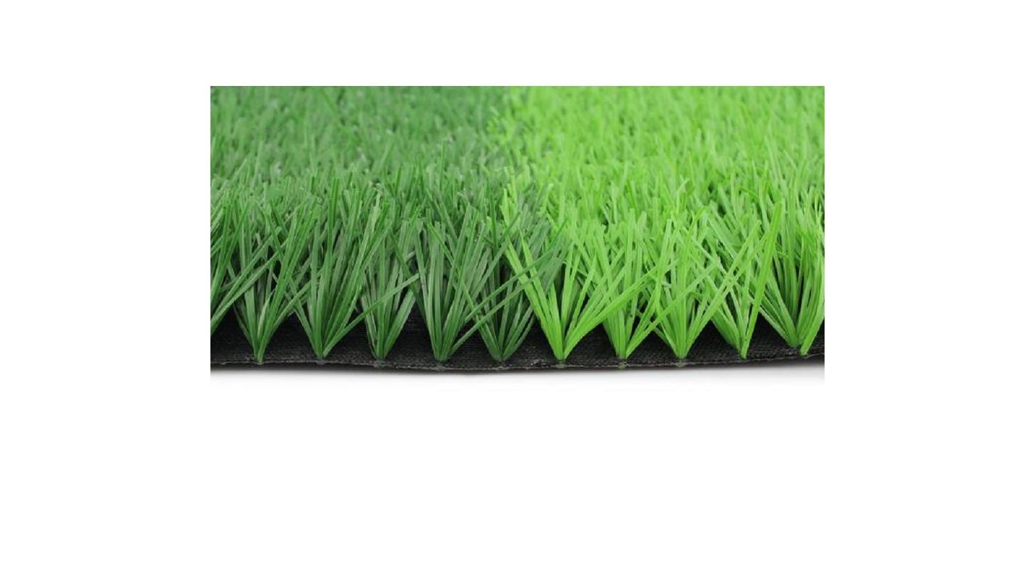 Logo Football Grass