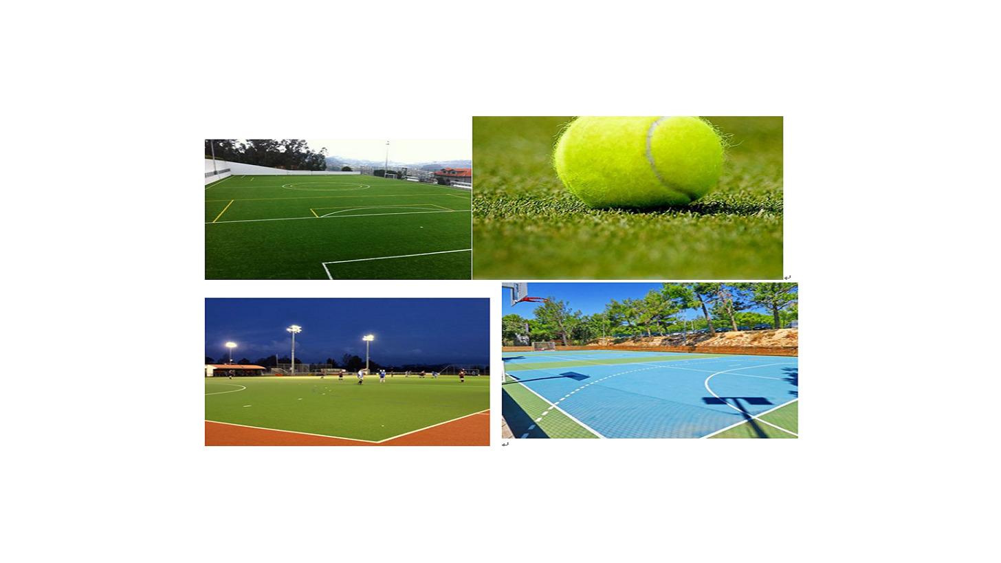 Logo Sports grass